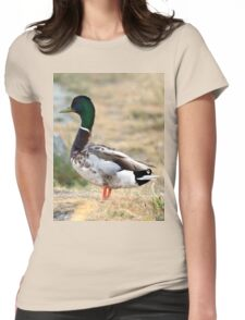 Mallard Duck Womens Fitted T-Shirt