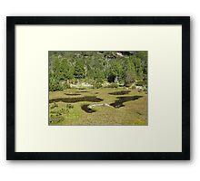 In Pinestone Valley Framed Print