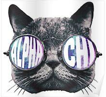Alpha Chi Cat Galaxy Poster