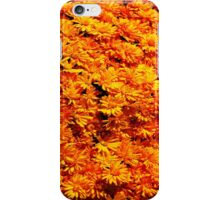 Yellow Mums iPhone Case iPhone Case/Skin