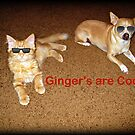 Gingers! by Angie O'Connor