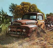 Cactus & The Pick-up Truck by Sherryll  Johnson