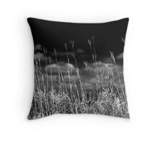 Prairies of the Midwestern US Throw Pillow