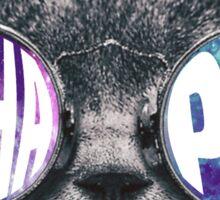 Alpha Phi Cat Galaxy Sticker
