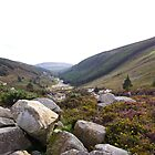 Wicklow Gap, Wicklow Mountains National Park by SMCK