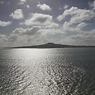 Rangitoto 2pm by Susie Peacock