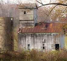 Abandoned Barn by lorilee