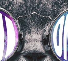 Chi Omega Cat Galaxy Sticker