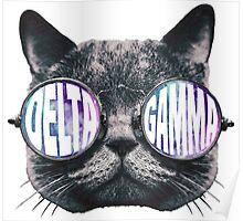 Delta Gamma Cat Galaxy Poster