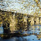 Gervais Street Bridge in Autumn by Widcat