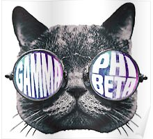 Gamma Phi Beta Cat Galaxy Poster