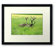 Santa's Big Boy Framed Print