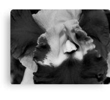 Hibiscus mono Canvas Print