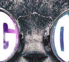 Sig Delt Cat Galaxy Sticker