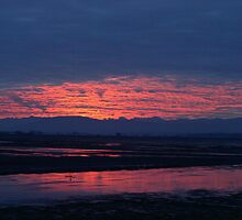 Sunset in Washington by siset