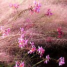 Windy in Pink by Rosalie Scanlon
