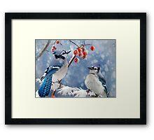 Blue Jay Greeting Card Framed Print