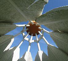 inside the shuttlecock by Dea Liang
