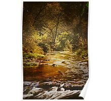 Autumn at Peterson Creek Poster