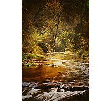 Autumn at Peterson Creek Photographic Print