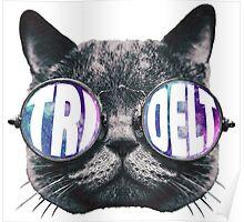 Tri Delta Cat Galaxy Poster