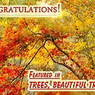 Featured in TREES, BEAUTIFUL TREES by LudaNayvelt