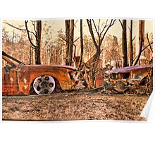 Bushfires a Timely reminder Poster