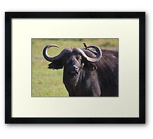 Let Me Whisper in Your Ear Framed Print