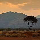 Outback central Australia by Roger Neal