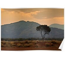 Amata - a dusty sunset Poster