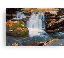 Autumn at the brook Canvas Print