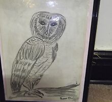 WIDSOM  BARN OWL by helen5000