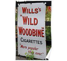 """Wild Woodbine"" Poster"