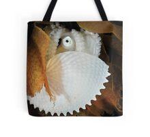 Paper Nautilus Tote Bag