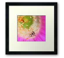 Insect in a flower.  Framed Print