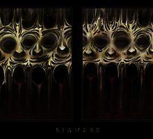 Siamese by Fyodor Krasniy