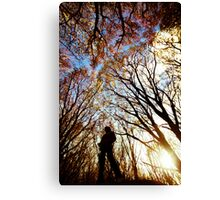 Barna wonderland Canvas Print
