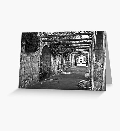 Alamo Garden Walk Greeting Card
