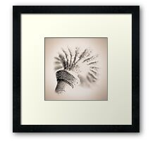 Poppy Head 08 Framed Print