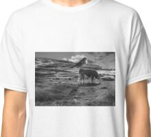 What a wonderful day Classic T-Shirt
