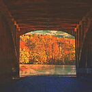 Looking Back At Autumn (best viewed larger) by Marie Sharp