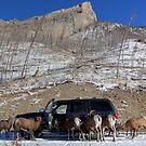 Rocky Mountain Car Wash by JamesA1
