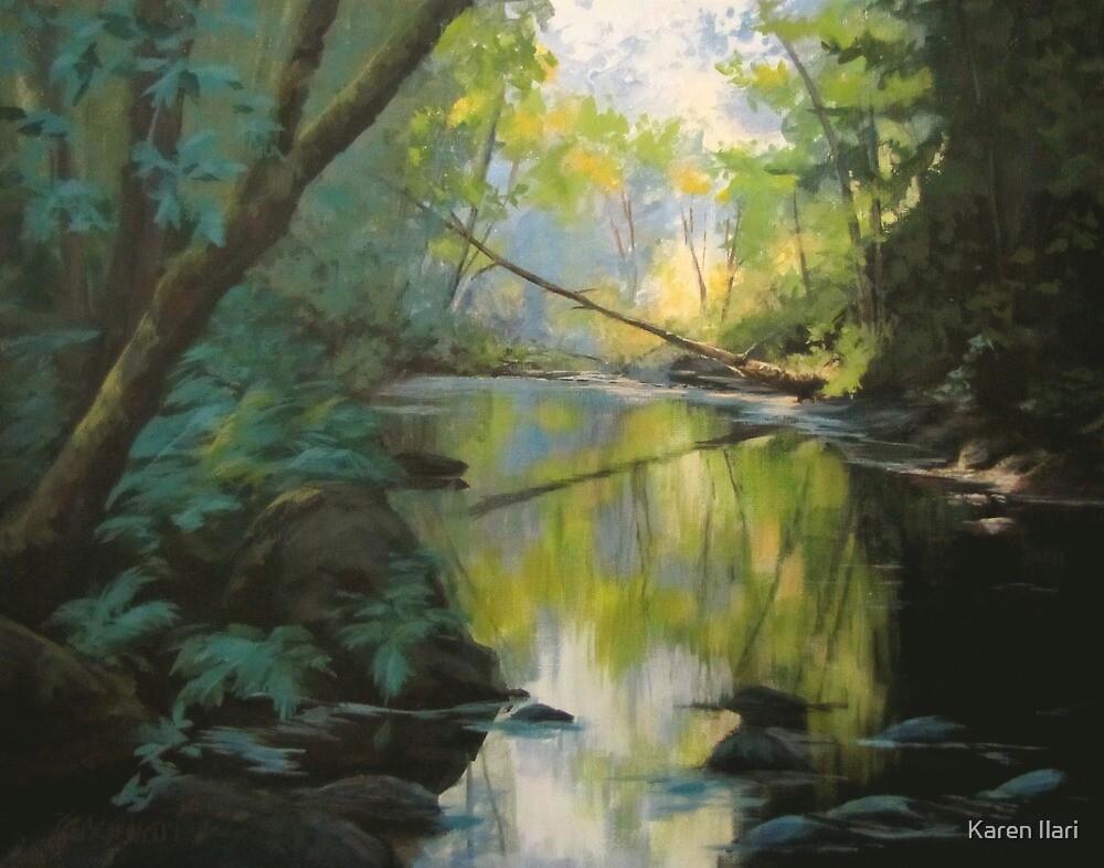 Champagne Creek by Karen Ilari