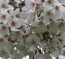 Flower tree Sticker