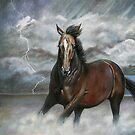 Storm Chaser by Tahnja