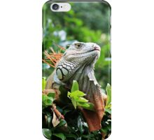 Red Iguana iPhone Case/Skin