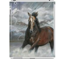 Storm Chaser iPad Case/Skin