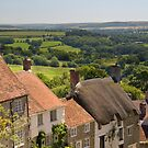 Gold Hill, Shaftsbury by Andrew Duke