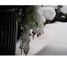 frozen it time ! Photographic Print