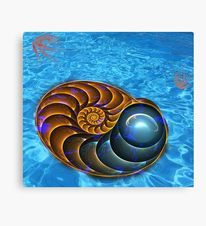 Ammonite (Nautilus) Canvas Print